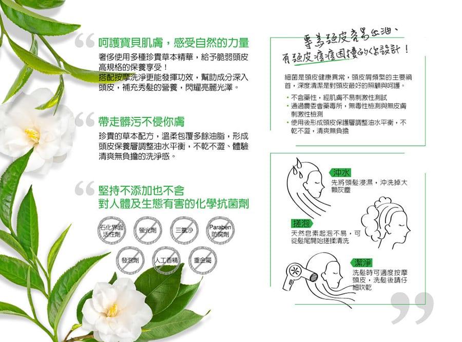 Aloe Clean Revitalizing Shampoo - Product Info 2