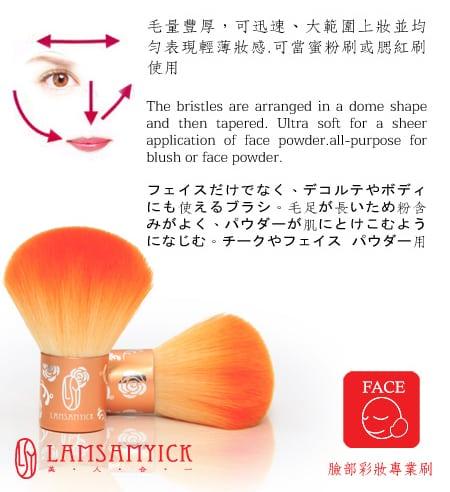 Orange Kabuki Blusher Brush - Product Info 2