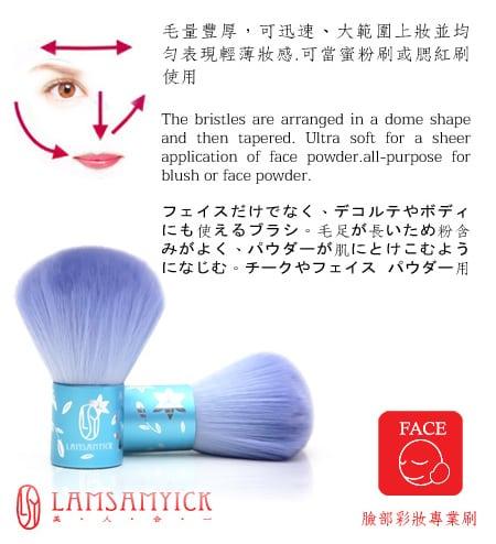 Blue Kabuki Blusher Brush - Product info 2