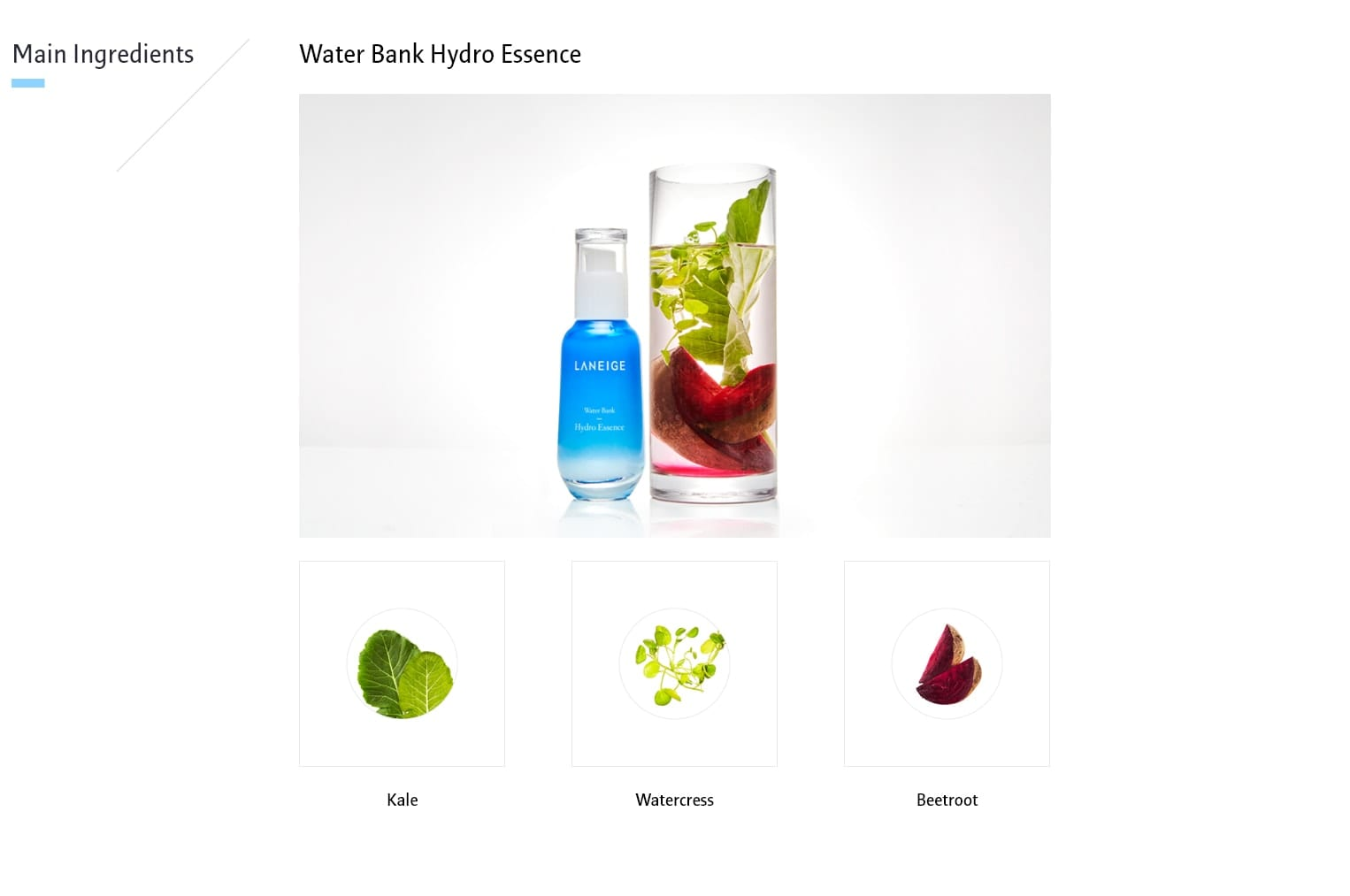 Laneige Water Bank Hydro Essence - ingredients