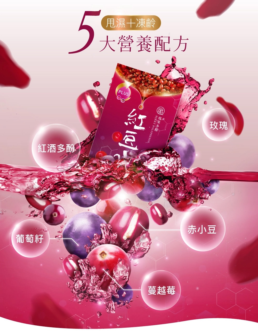 Berry Polyphenol Red Bean - Nutrition ingredients
