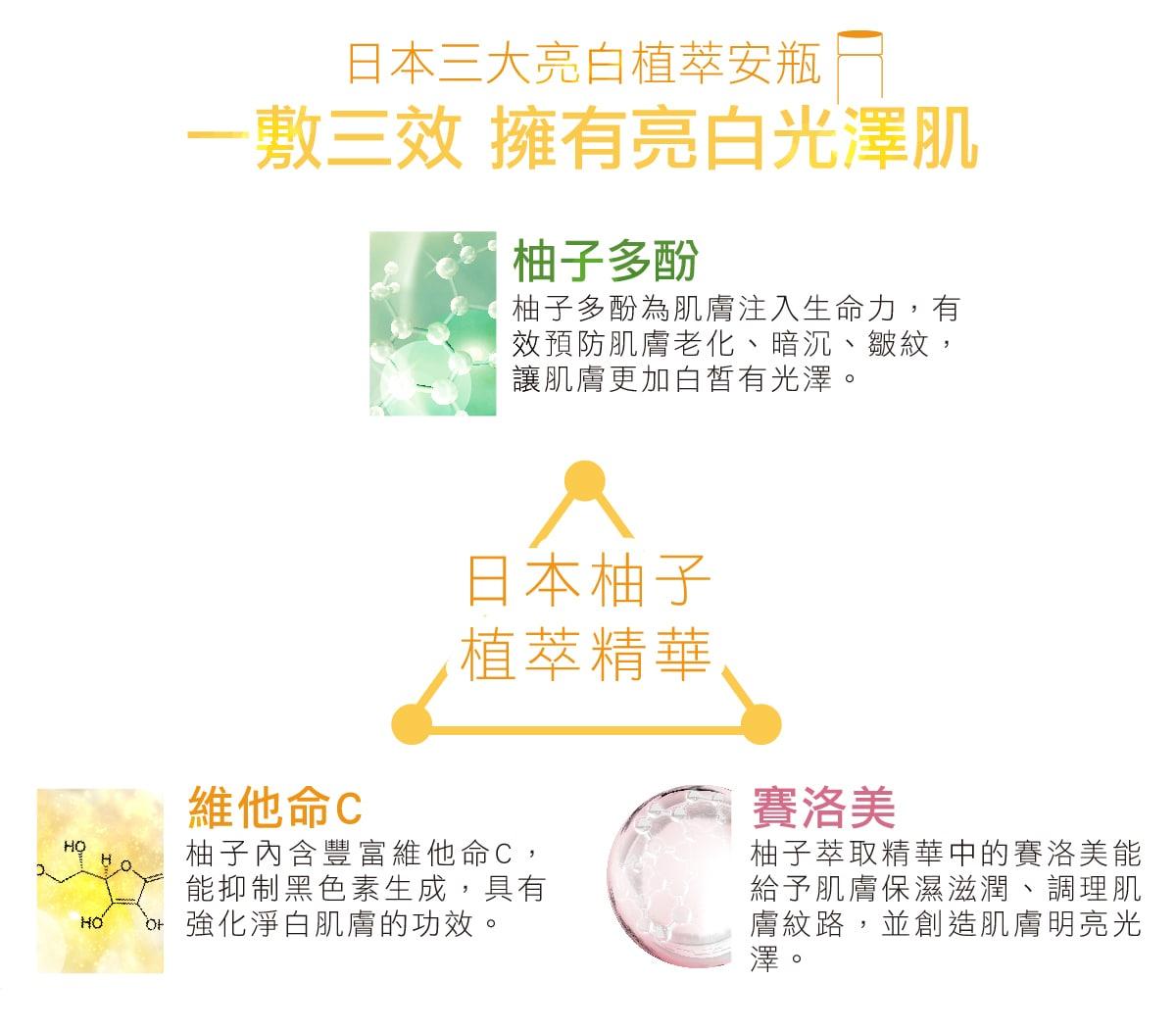 Skin Brighten Up Mask - Ingredient