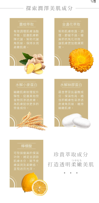 Ginger Body Wash - Ingredients
