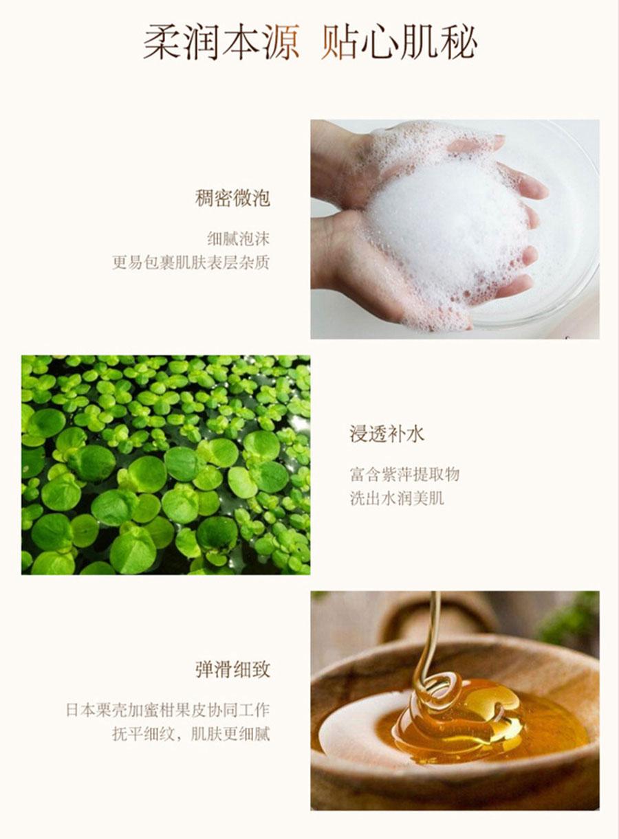 Gentle Cleansing Foam - Ingredient