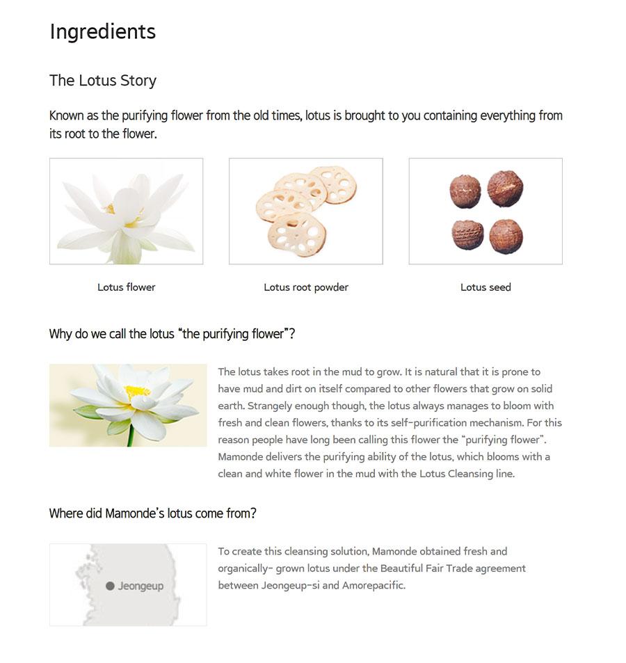 Micro Deep Cleansing Oil - Ingredient