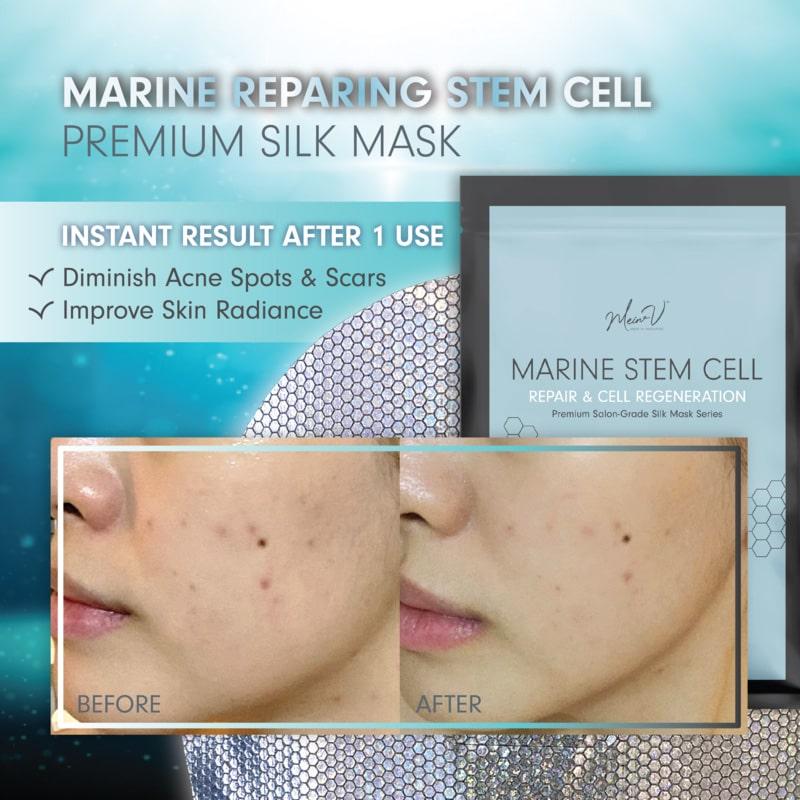Premium Salon-Grade Silk Mask - Intro