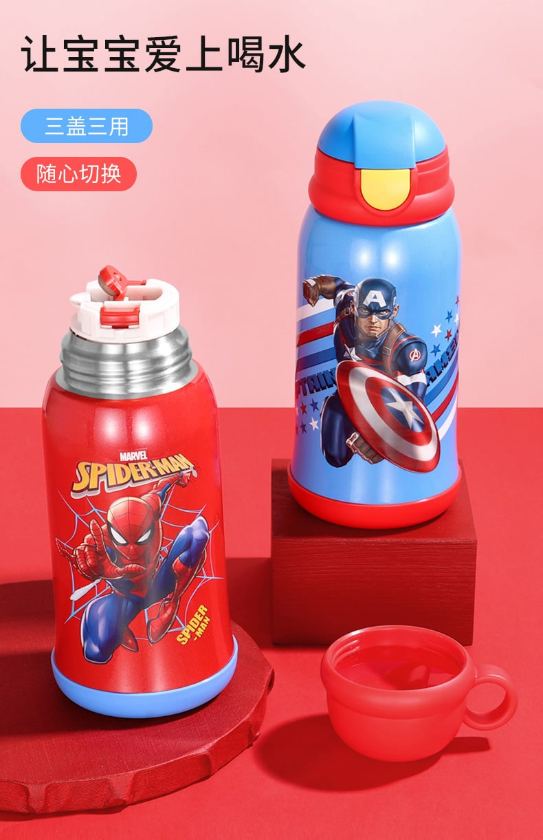 Stainless Steel Thermos Flask - Intro
