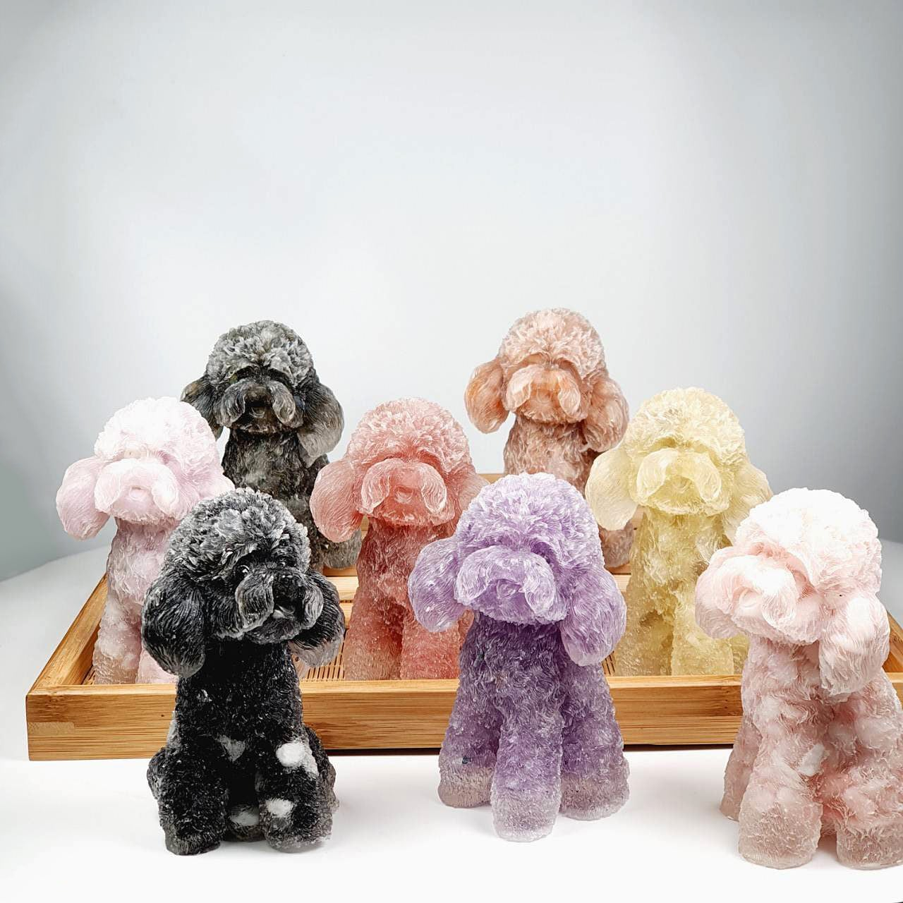 Teddy Poodle Crystal Decoration - All Types