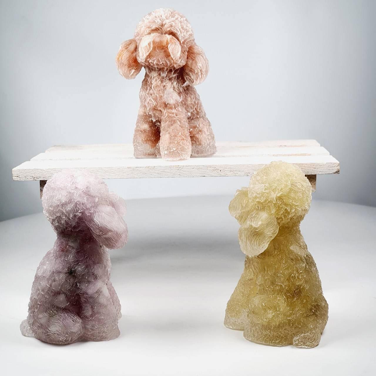 Teddy Poodle Crystal Decoration - Intro